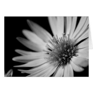 Black & White Flower Greeting Card
