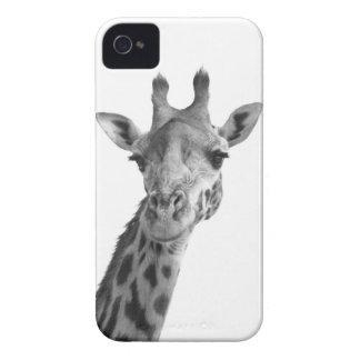 Black & White Giraffe iPhone 4 Case
