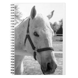 Black & White Grey Horse Notebooks