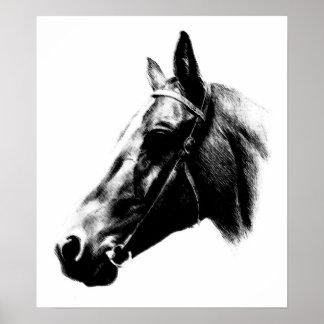 Black White Horse Drawing Artwork Poster