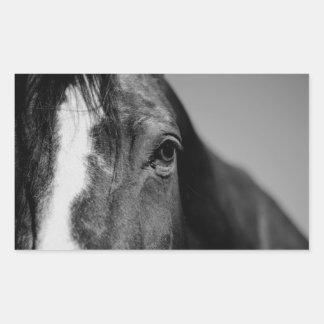 Black White Horse Eye Artwork Rectangular Sticker