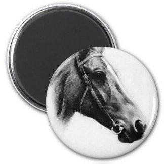 Black & White Horse Refrigerator Magnet