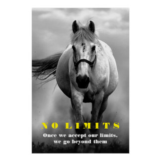 Black White Horse Motivational No Limits Artwork Poster
