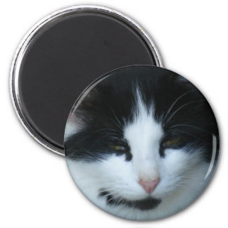 Black & White Kitty Cat Magnet