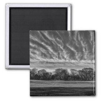 Black & White Landscape Central Park Photo Fridge Magnet