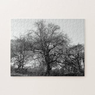 Black & White Landscape Winter Tree in Central Par Jigsaw Puzzle