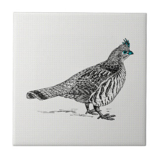 Black & White Line Drawing Wild Bird Small Square Tile