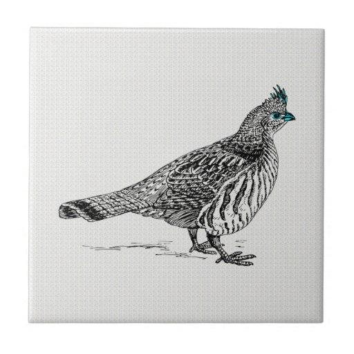 Black & White Line Drawing Wild Bird Ceramic Tiles