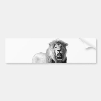 Black & White Lion Bumper Sticker