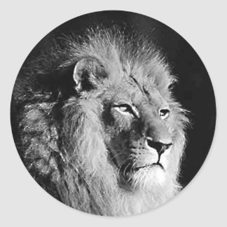 Black White Lion Photo Sticker