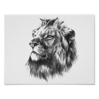 Black & White Lions Head Poster