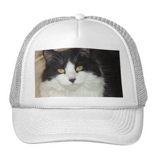 Black & White Longhaired Cat Closeup Trucker Hats