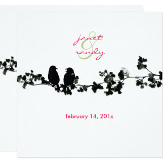 Black + white love birds card