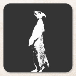 Black & White Meerkat - right - Coasters