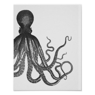 Black & White Modern Octopus Poster