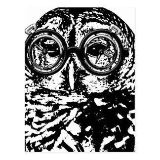 Black & white monochromatic owl with glasses postcard