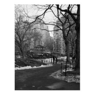 Black White NY Central Park Postcard