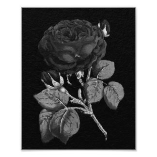 Black&White Painted Abstract Rose Photo