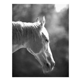 Black White Pop Art Horse Flyers