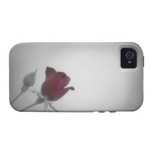 Black, White & Rose Photography iPhone 4/4S Cover