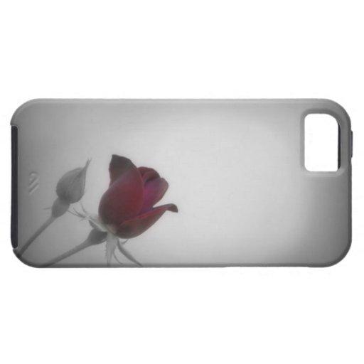 Black, White & Rose Photography iPhone 5 Case