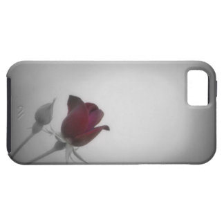 Black, White & Rose Photography iPhone 5 Cover