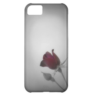 Black White Rose Photography Case For iPhone 5C