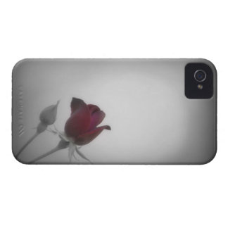 Black White Rose Photography iPhone 4 Case