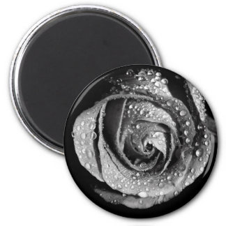 Black & White Rose With Dew Drops 6 Cm Round Magnet