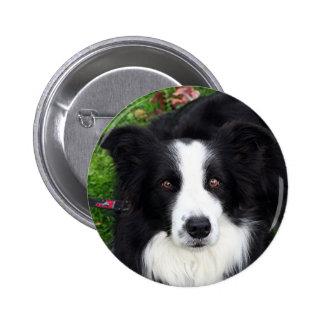 Black & white sheep dog 6 cm round badge