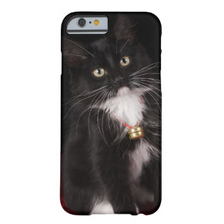 Black & white short-haired kitten,2 1/2 months barely there iPhone 6 case