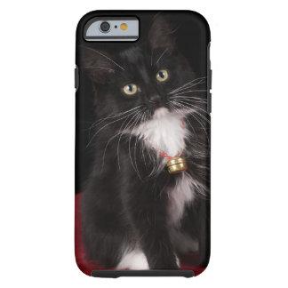 Black & white short-haired kitten,2 1/2 months tough iPhone 6 case