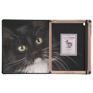 Black white short-haired kitten 2 1 2 months iPad folio cases