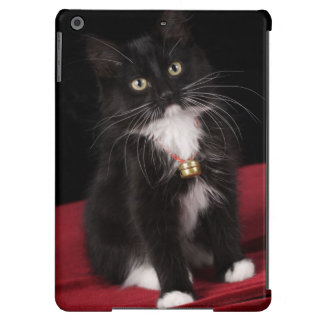 Black & white short-haired kitten,2 1/2 months iPad air cases