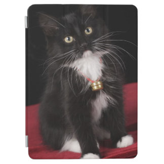 Black & white short-haired kitten,2 1/2 months iPad air cover