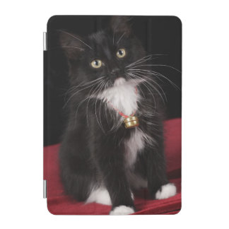 Black & white short-haired kitten,2 1/2 months iPad mini cover