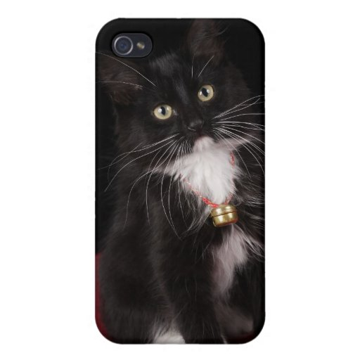 Black & white short-haired kitten,2 1/2 months iPhone 4/4S covers