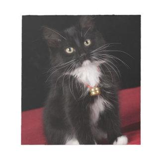 Black & white short-haired kitten,2 1/2 months notepad
