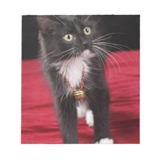 Black & white short-haired kitten, 2 1/2 months notepad