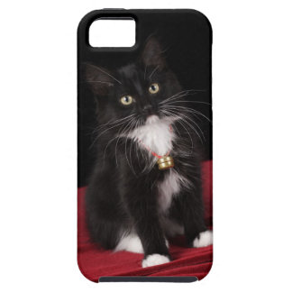 Black & white short-haired kitten,2 1/2 months tough iPhone 5 case