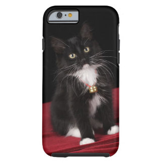 Black & white short-haired kitten,2 1/2 months tough iPhone 6 case