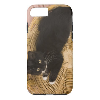 Black & white short-haired kitten on hamper lid, 2 iPhone 7 case