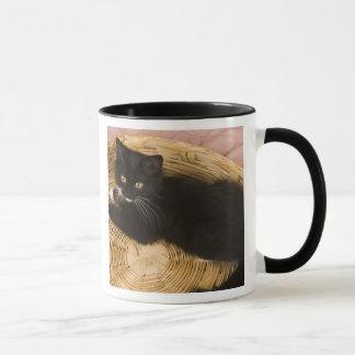 Black & white short-haired kitten on hamper lid, 2 mug