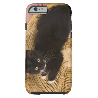 Black & white short-haired kitten on hamper lid, 2 tough iPhone 6 case