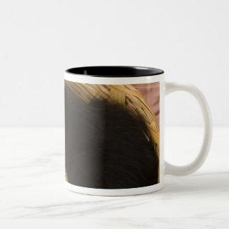 Black & white short-haired kitten on hamper lid, 2 Two-Tone coffee mug