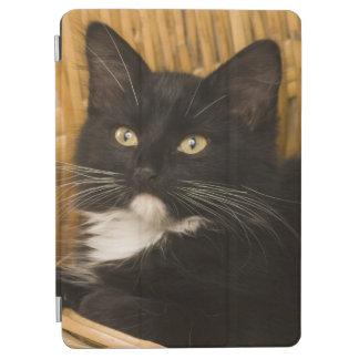 Black & white short-haired kitten on hamper lid, iPad air cover