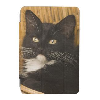 Black & white short-haired kitten on hamper lid, iPad mini cover