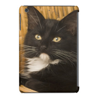 Black & white short-haired kitten on hamper lid, iPad mini retina cases