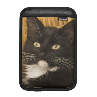 Black & white short-haired kitten on hamper lid, iPad mini sleeve