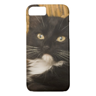 Black & white short-haired kitten on hamper lid, iPhone 7 case